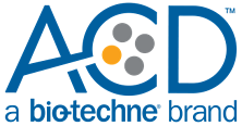 2019_ACD - spot color - lockup logo - color