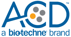 2019_ACD - spot color - lockup logo - color